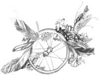 bike-wheel_medium1