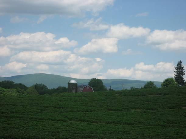 barn-shot