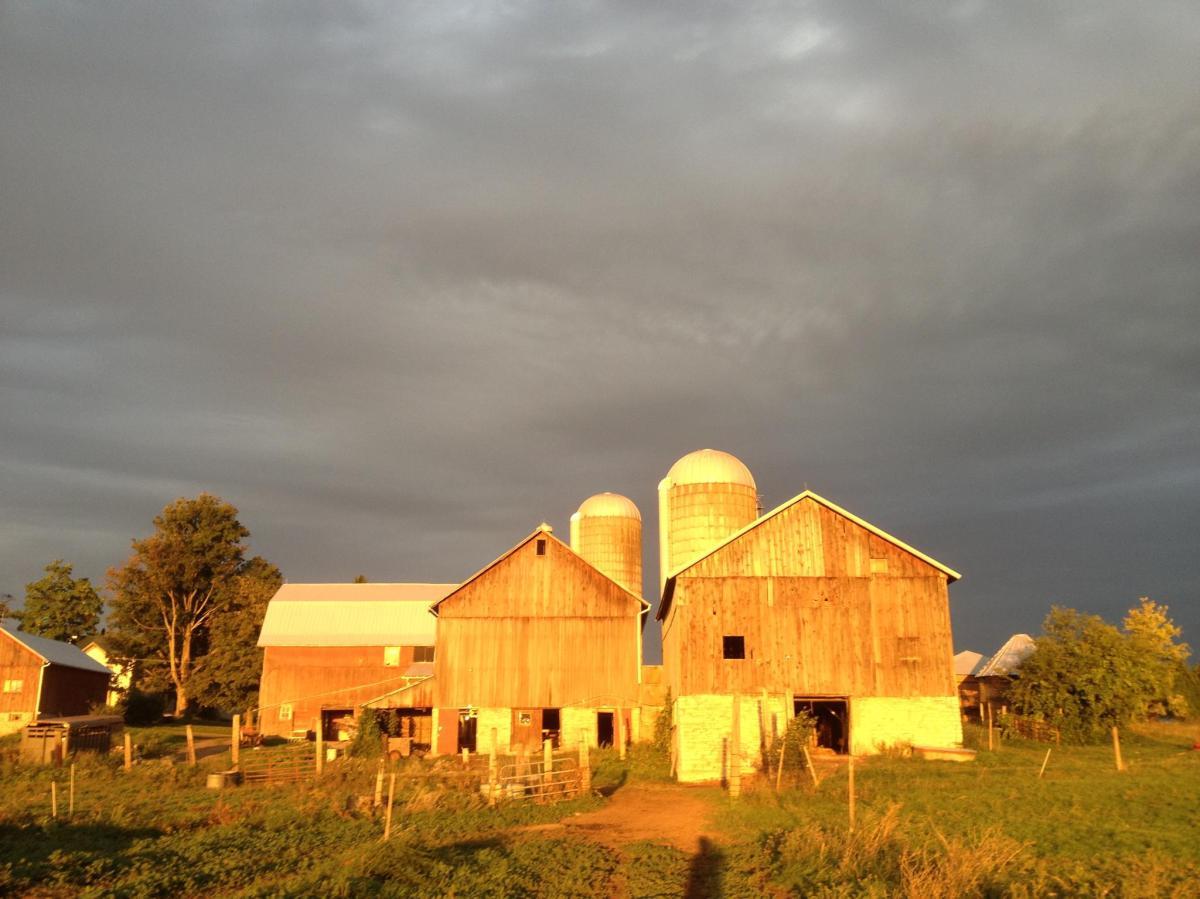 Greyrock Farm