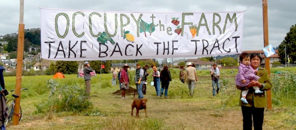 OccupyBanner