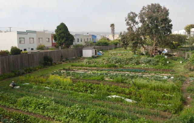 farm-overhead1