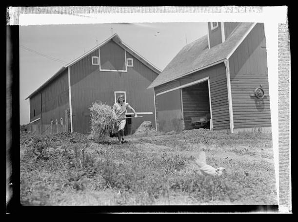 Courtesy of the Farm Security Administration photo archive, Library of Congress.