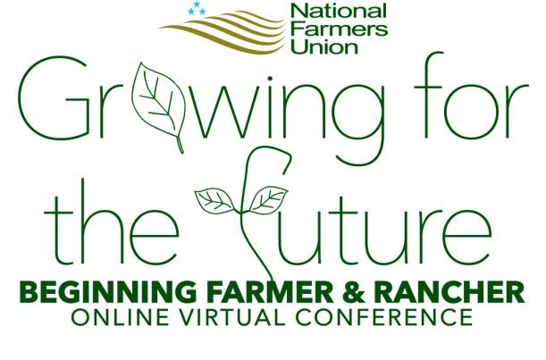 fu-conference-alternate-online