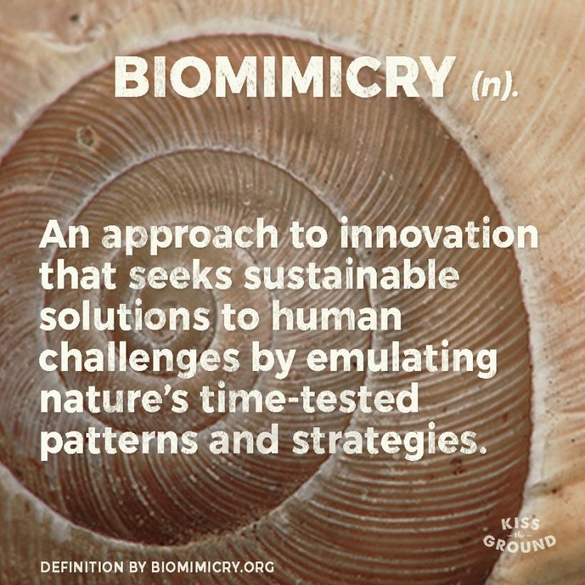 biomimicrydef