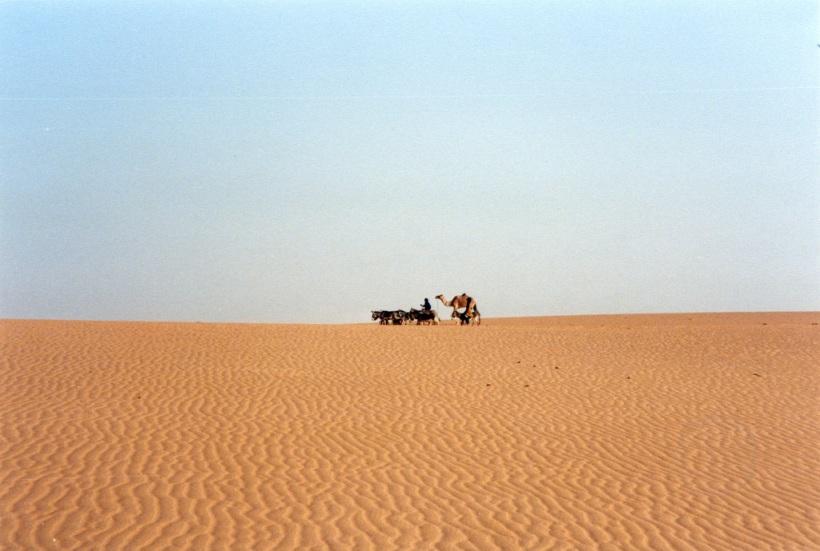 sahara-mali