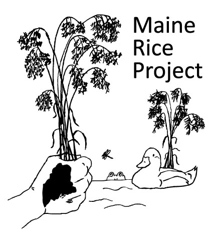 20150403085824-Maine-Rice-Project-logo_full
